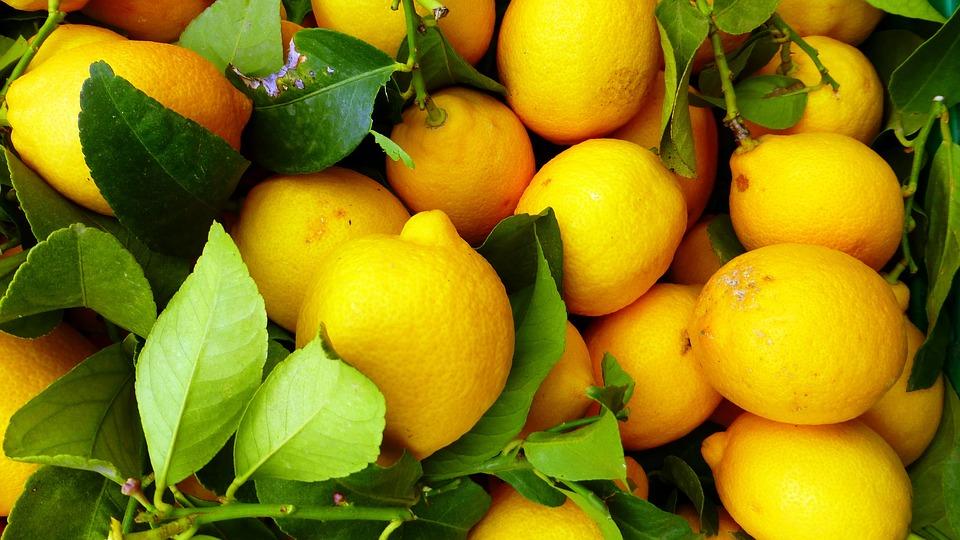 Как вырастить лимон из семечка | КаспийИнфо