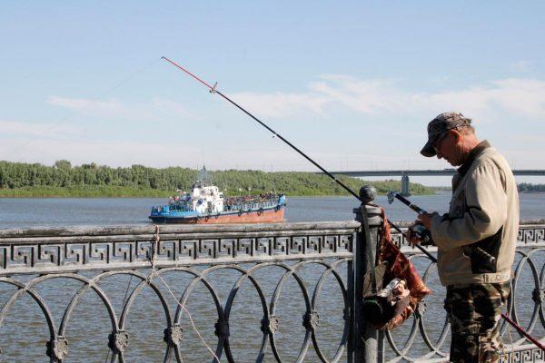 Рыбак рассказал, что происходит с щукой в Астраханской области